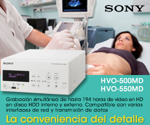 SONY LATIN AMERICA INC