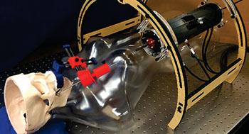 Imagen: Un modelo de un paciente en una máquina de resonancia magnética (Fotografía de David Comber, Universidad de Vanderbilt).