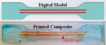 Imagen: Los hidrogeles reforzados con fibras han sido diseñados para simular a fortaleza del cartílago humano (Fotografía cortesía de la Universidad de Wollongong).