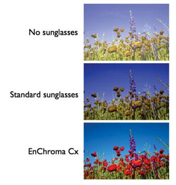 Imagen: Una simulación de la corrección del color usando Cx de EnChroma (Fotografía cortesía de EnChroma).