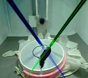 Imagen: El seguimiento de los instrumentos, con base en el análisis del video de la endoscopia (Fotografía cortesía de la UPM).