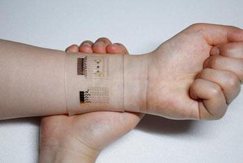 Imagen: La matriz en el dispositivo electroquímico GP-híbrido (Fotografía cortesía del Centro para la Investigación de Nanopartículas en el IBS).